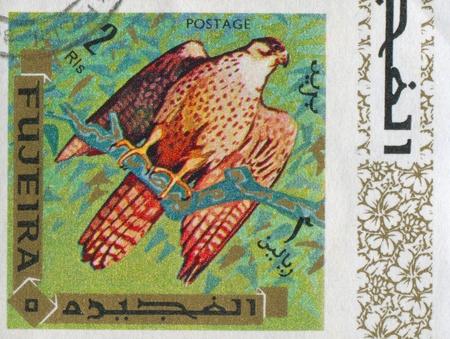 fujeira: FUJEIRA - CIRCA 1972: stamp printed by Fujeira, shows eagle, circa 1972 Editorial