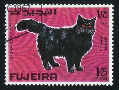 fujeira: FUJEIRA - CIRCA 1972: stamp printed by Fujeira, shows cat, circa 1972
