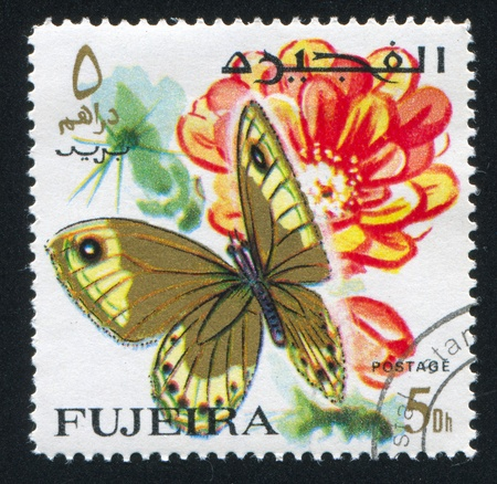FUJEIRA - CIRCA 1972: stamp printed by Fujeira, shows butterfly, circa 1972