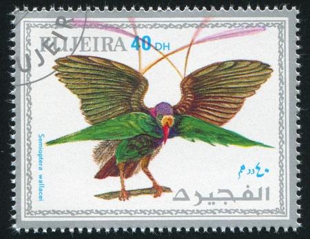 FUJEIRA - CIRCA 1972: stamp printed by Fujeira, shows tropical bird, circa 1972