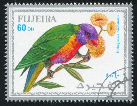 FUJEIRA - CIRCA 1972: stamp printed by Fujeira, shows tropical bird, parrot, circa 1972