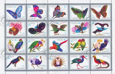 fujeira: FUJEIRA - CIRCA 1972: stamp printed by Fujeira, shows butterfly and bird, circa 1972 Editorial