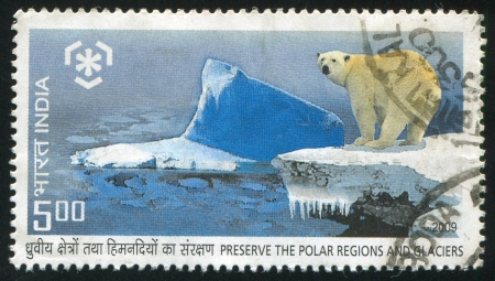 INDIA - CIRCA 2009: stamp printed by India, shows polar bear, circa 2009 Stock Photo - 15438958