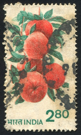 admixture: INDIA - CIRCA 1953: stamp printed by India, shows Fruits and Plants, circa 1953