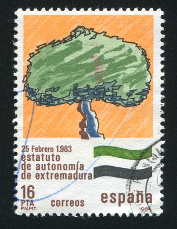 autonomia: ESPA�A - CIRCA 1984: sello impreso por Espa�a, muestra Emblem �rbol de Estatuto de Autonom�a de Extremadura, alrededor del a�o 1984 Editorial