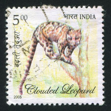 INDIA - CIRCA 2005: stamp printed by India, shows clouded leopard, circa 2005 Stock Photo - 15740821
