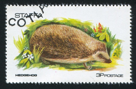insectivorous: GREAT BRITAIN - CIRCA 1973: stamp printed by Great Britain, shows hedgehog, circa 1973