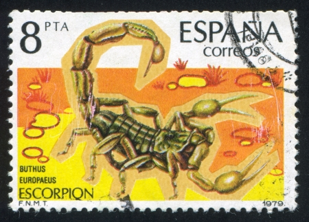 SPAIN - CIRCA 1979: stamp printed by Spain, shows Scorpion, circa 1979 Stock Photo - 16223705