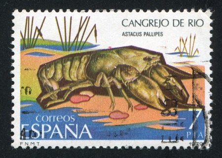 SPAIN - CIRCA 1979: stamp printed by Spain, shows Crawfish, circa 1979 Stock Photo - 16285116