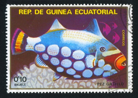 EQUATORIAL GUINEA - CIRCA 1973: stamp printed by Equatorial Guinea, shows Triggerfish, circa 1973 Stock Photo - 16337757