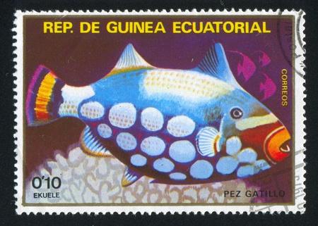 triggerfish: EQUATORIAL GUINEA - CIRCA 1973: stamp printed by Equatorial Guinea, shows Triggerfish, circa 1973