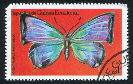 EQUATORIAL GUINEA - CIRCA 1972: stamp printed by Equatorial Guinea, shows Great Purple Hairstreak Butterfly, circa 1972 Stock Photo - 16337831