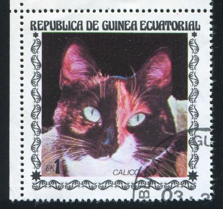 calico whiskers: EQUATORIAL GUINEA - CIRCA 1972: stamp printed by Equatorial Guinea, shows Calico Cat, circa 1972
