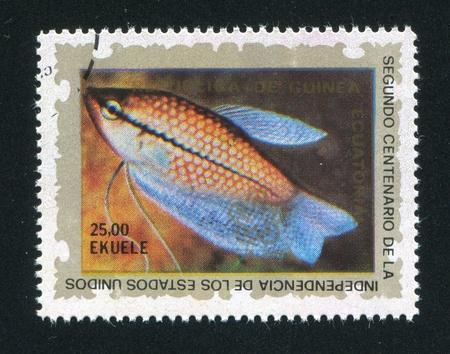 EQUATORIAL GUINEA - CIRCA 1976: stamp printed by Equatorial Guinea, shows a Fish, circa 1976 Stock Photo - 16745179