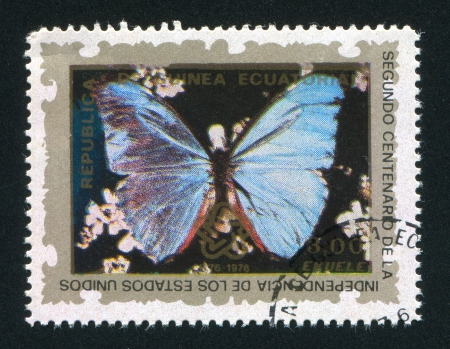EQUATORIAL GUINEA - CIRCA 1976: stamp printed by Equatorial Guinea, shows a Butterfly, circa 1976 Stock Photo - 16745177
