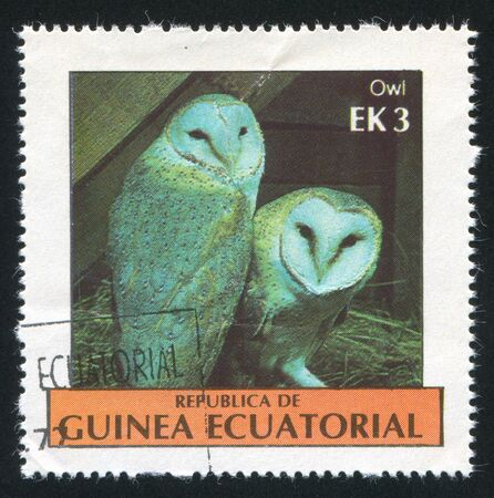 EQUATORIAL GUINEA - CIRCA 1976: stamp printed by Equatorial Guinea, shows Owls, circa 1976 Stock Photo - 16745223