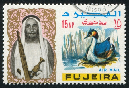 FUJEIRA - CIRCA 1976: stamp printed by Fujeira, shows a Man and a Duck, circa 1976