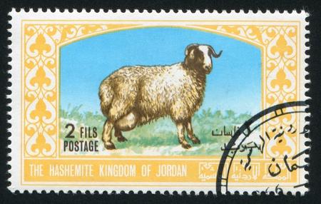 JORDAN - CIRCA 1976: stamp printed by Jordan, shows a sheep, circa 1976 Stock Photo - 16745260