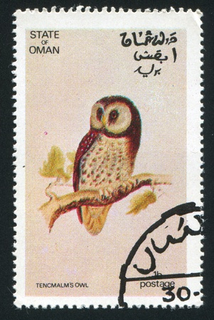 OMAN - CIRCA 1972: stamp printed by Oman, shows Tencmalm Owl, circa 1972 Stock Photo - 17145731