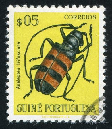 PORTUGUESE GUINEA - CIRCA 1972: stamp printed by Portuguese Guinea, shows a Beatle, circa 1972 Stock Photo - 17145775