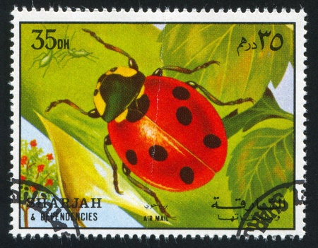 SHARJAH AND DEPENDENCIES - CIRCA 1972: stamp printed by Sharjah and Dependencies, shows a Ladybug, circa 1972 Stock Photo - 17145666