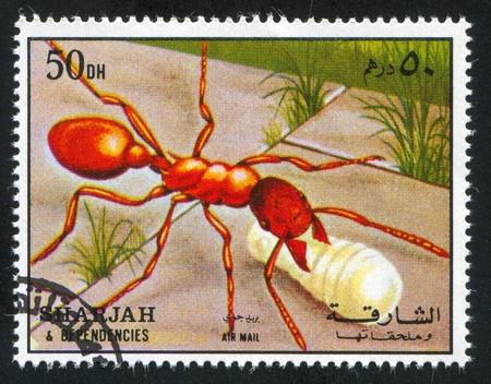 dependencies: SHARJAH AND DEPENDENCIES - CIRCA 1972: stamp printed by Sharjah and Dependencies, shows an Ant, circa 1972