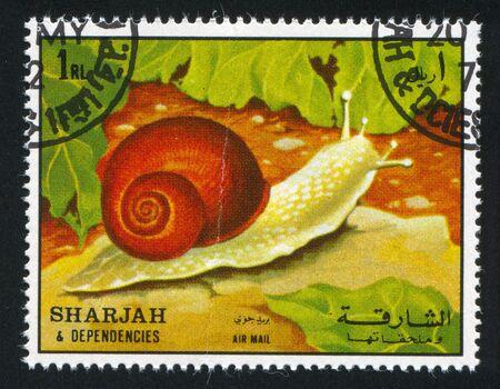 dependencies: SHARJAH AND DEPENDENCIES - CIRCA 1972: stamp printed by Sharjah and Dependencies, shows a Land Snail, circa 1972