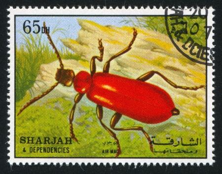 dependencies: SHARJAH AND DEPENDENCIES - CIRCA 1972: stamp printed by Sharjah and Dependencies, shows a Beetle, circa 1972