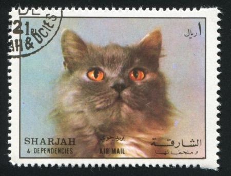 dependencies: SHARJAH AND DEPENDENCIES - CIRCA 1972: stamp printed by Sharjah and Dependencies, shows a Persian Cat, circa 1972
