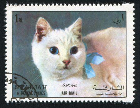 SHARJAH AND DEPENDENCIES - CIRCA 1972: stamp printed by Sharjah and Dependencies, shows a Cat, circa 1972