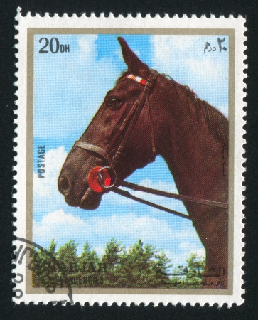 SHARJAH AND DEPENDENCIES - CIRCA 1972: stamp printed by Sharjah and Dependencies, shows a Horse, circa 1972 Stock Photo - 17145737