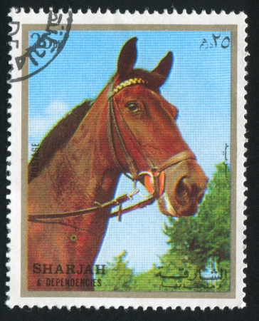 SHARJAH AND DEPENDENCIES - CIRCA 1972: stamp printed by Sharjah and Dependencies, shows a Horse, circa 1972 Stock Photo - 17145539