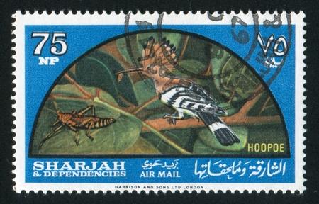SHARJAH AND DEPENDENCIES - CIRCA 1972: stamp printed by Sharjah and Dependencies, shows Hoopoe, circa 1972 Stock Photo - 17145655