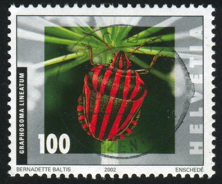 graphosoma: SWITZERLAND - CIRCA 2002: stamp printed by Switzerland, shows Graphosoma lineatum, circa 2002