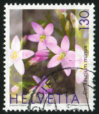 SWITZERLAND - CIRCA 2003: stamp printed by Switzerland, shows Centaurium minus, circa 2003 Stock Photo - 17146153