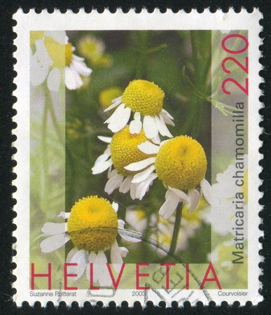 chamomilla: SWITZERLAND - CIRCA 2003: stamp printed by Switzerland, shows Matricaria chamomilla, circa 2003