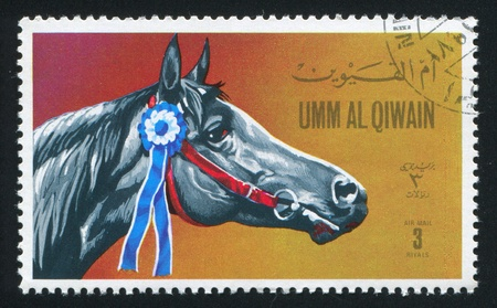 umm: UMM AL-QUWAIN - CIRCA 1972: stamp printed by Umm al-Quwain, shows a Horse, circa 1972