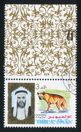 UMM AL-QUWAIN - CIRCA 1972: stamp printed by Umm al-Quwain, shows Sheikh and Hyena, circa 1972 Stock Photo - 17145429