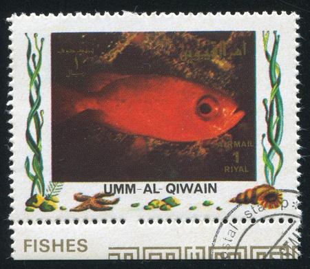 UMM AL-QUWAIN - CIRCA 1972: stamp printed by Umm al-Quwain, shows Fish, circa 1972 Stock Photo - 17145275