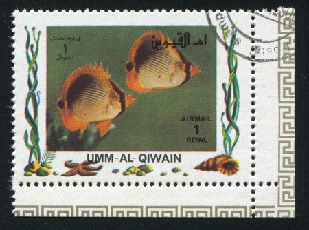umm: UMM AL-QUWAIN - CIRCA 1972: stamp printed by Umm al-Quwain, shows Fish, circa 1972