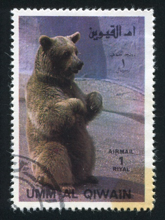 UMM AL-QUWAIN - CIRCA 1972: stamp printed by Umm al-Quwain, shows a Bear, circa 1972 Stock Photo - 17145718