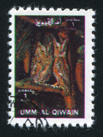 UMM AL-QUWAIN - CIRCA 1972: stamp printed by Umm al-Quwain, shows Owls, circa 1972 Stock Photo - 17145597