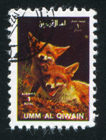 UMM AL-QUWAIN - CIRCA 1972: stamp printed by Umm al-Quwain, shows Foxes, circa 1972 Stock Photo - 17145637