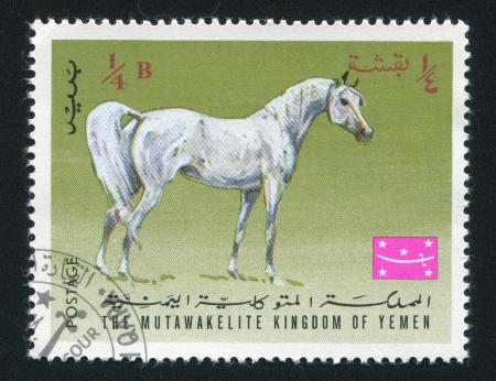 YEMEN - CIRCA 1968: stamp printed by Yemen, shows Arabian Horse, circa 1968 Stock Photo - 17145839