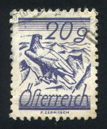 shouldered: AUSTRIA - CIRCA 1925: stamp printed by Austria, shows White Shouldered Eagle, circa 1925