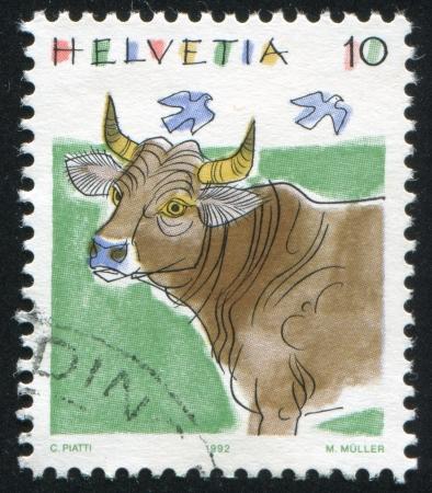 SWITZERLAND - CIRCA 1992: stamp printed by Switzerland, shows Cow, Animals, circa 1992 Stock Photo - 17464465