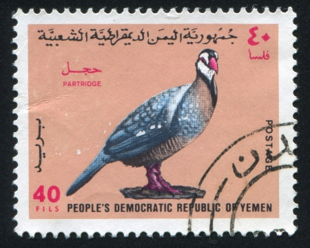 YEMEN - CIRCA 1971: stamp printed by Yemen, shows Partridge, circa 1971 Stock Photo - 17437336