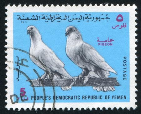 YEMEN - CIRCA 1971: stamp printed by Yemen, shows Pigeons, circa 1971 Stock Photo - 17437341