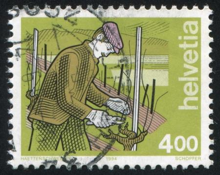 wine grower: SWITZERLAND - CIRCA 1994: stamp printed by Switzerland, shows Wine Grower, circa 1994 Editorial
