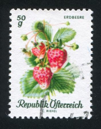 frondage: AUSTRIA - CIRCA 1966: stamp printed by Austria, shows Strawberry, circa 1966